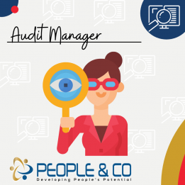 People and Co Ltd Audit Manager Accountants Jobs in Malta Job search malta europe 2