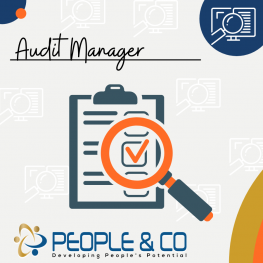 People and Co Ltd Audit Manager Accountants Jobs in Malta Job search malta europe2