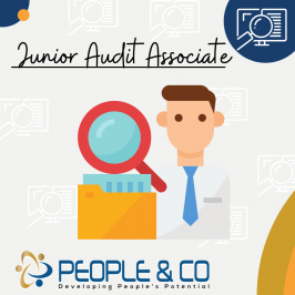 People and Co Ltd Junior Audit Associate Accountants Jobs in Malta Job search malta europe2