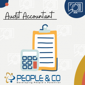 People and Co Ltd Audit Accountant Accountants Jobs in Malta Job search malta europe2