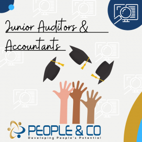 People and Co Ltd Brand Manager Junior Auditors Accountants Jobs in Malta Job search malta europe2