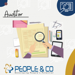 People and Co Ltd Auditors Accountants Jobs in Malta Job search malta europe2