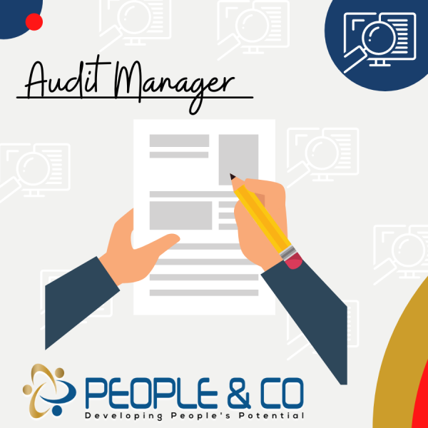 People and Co Ltd Auditor Manager Accountants Jobs in Malta Job search malta europe